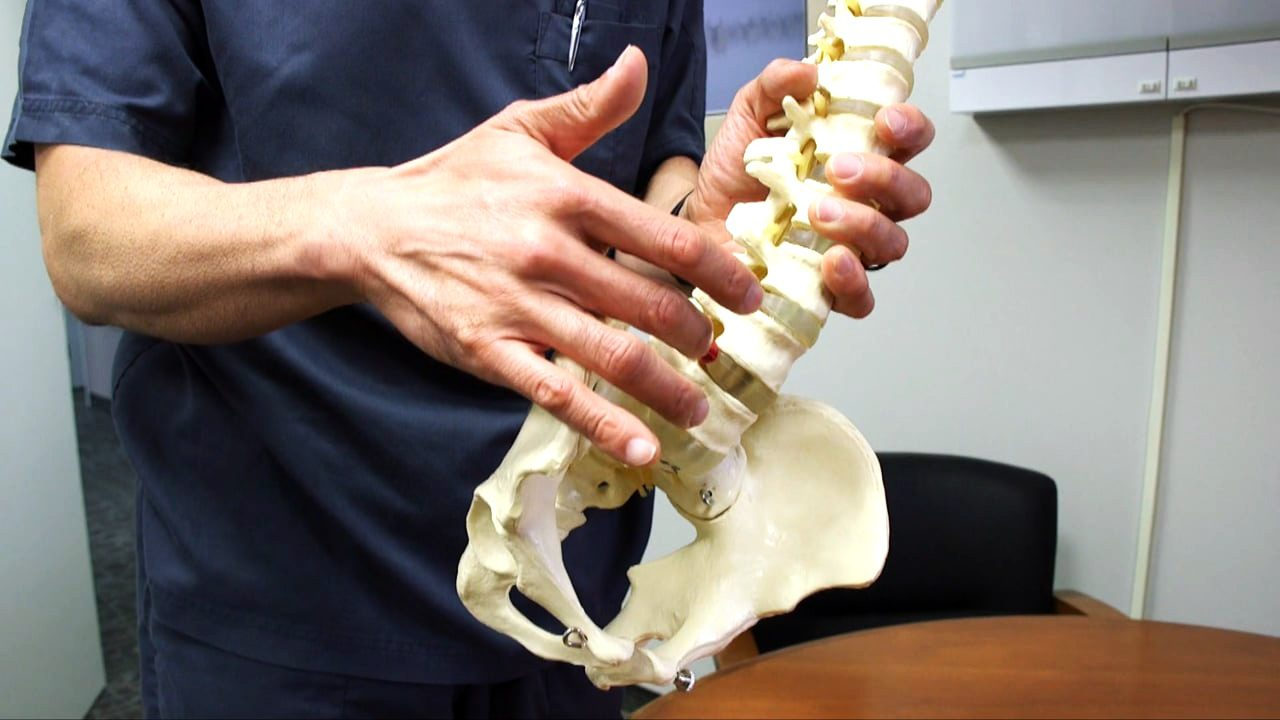personal injury doctor chiropractor spine model explanation el paso tx