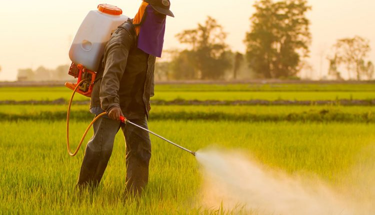 The Link Between Thyroid Disease & Pesticides | Wellness Clinic